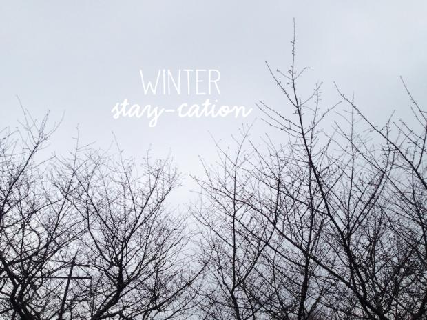 winterstaycation